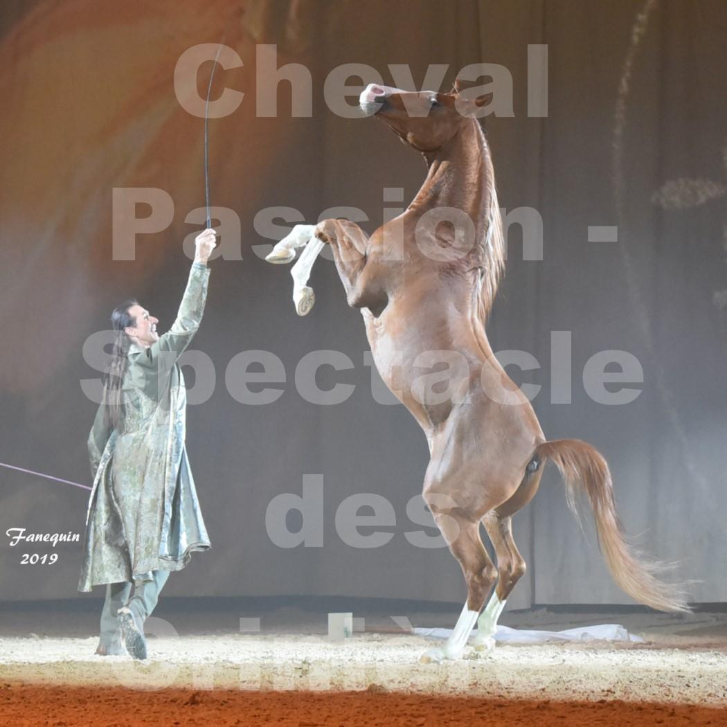 Cheval Passion 2019 - Spectacle des CRINIÈRES d'OR - Frédéric PIGNON & Cheval Alezan en liberté - 32