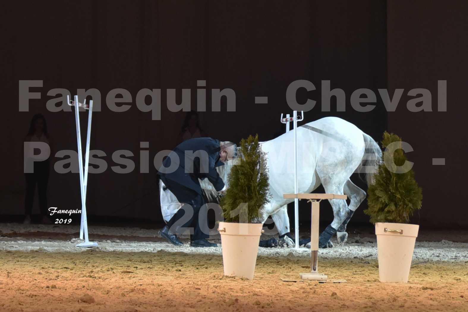 Cheval Passion 2019 - M. I. S. E. C. - Michel CASSAN & cheval en liberté - 20