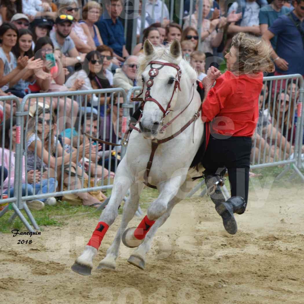 Spectacle Équestre le 3 juin 2018 à Saint Gély du Fesc - Voltige équestre - Troupe de Jean Antoine FIRMIN - 48