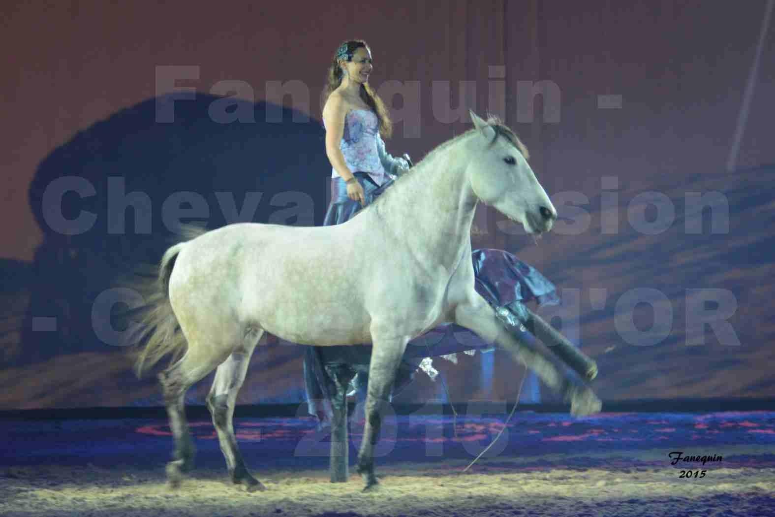 Cheval Passion 2015 - Spectacle des Crinières d'OR - Lucie VAUTHIER & 2 chevaux en liberté - 07