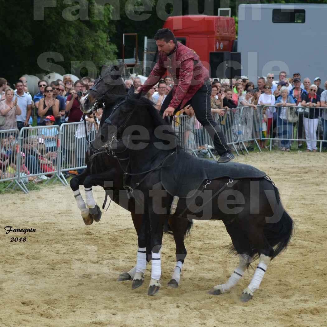 Spectacle Équestre le 3 juin 2018 à Saint Gély du Fesc - Poste Hongroise de 2 à 6 chevaux - Benoît SOUMILLE - 20