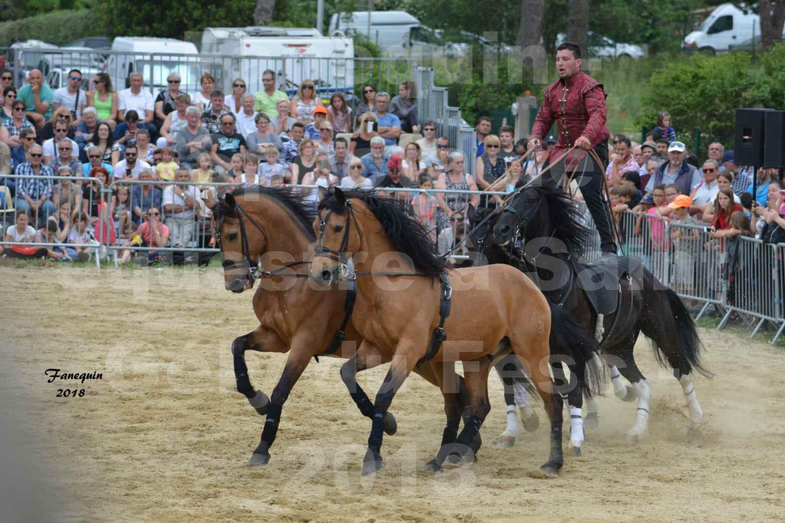 Spectacle Équestre le 3 juin 2018 à Saint Gély du Fesc - Poste Hongroise de 2 à 6 chevaux - Benoît SOUMILLE - 10