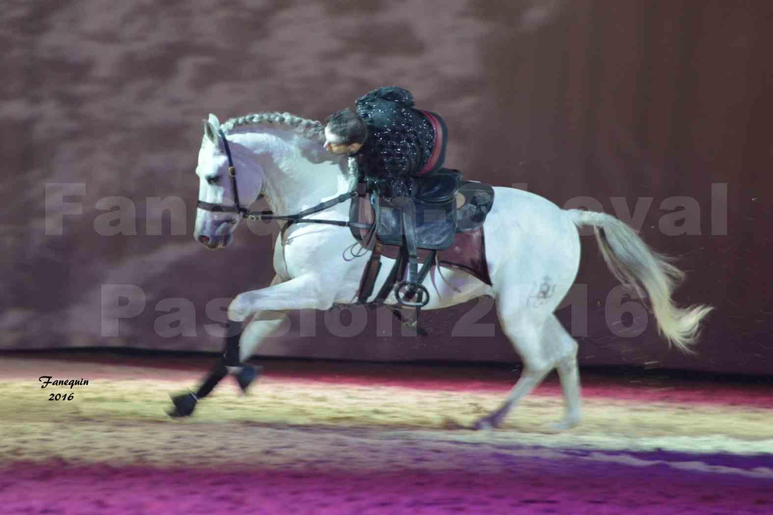 Cheval Passion 2016 - Spectacle les Crinières d'OR - Troupe JEHOL - 2
