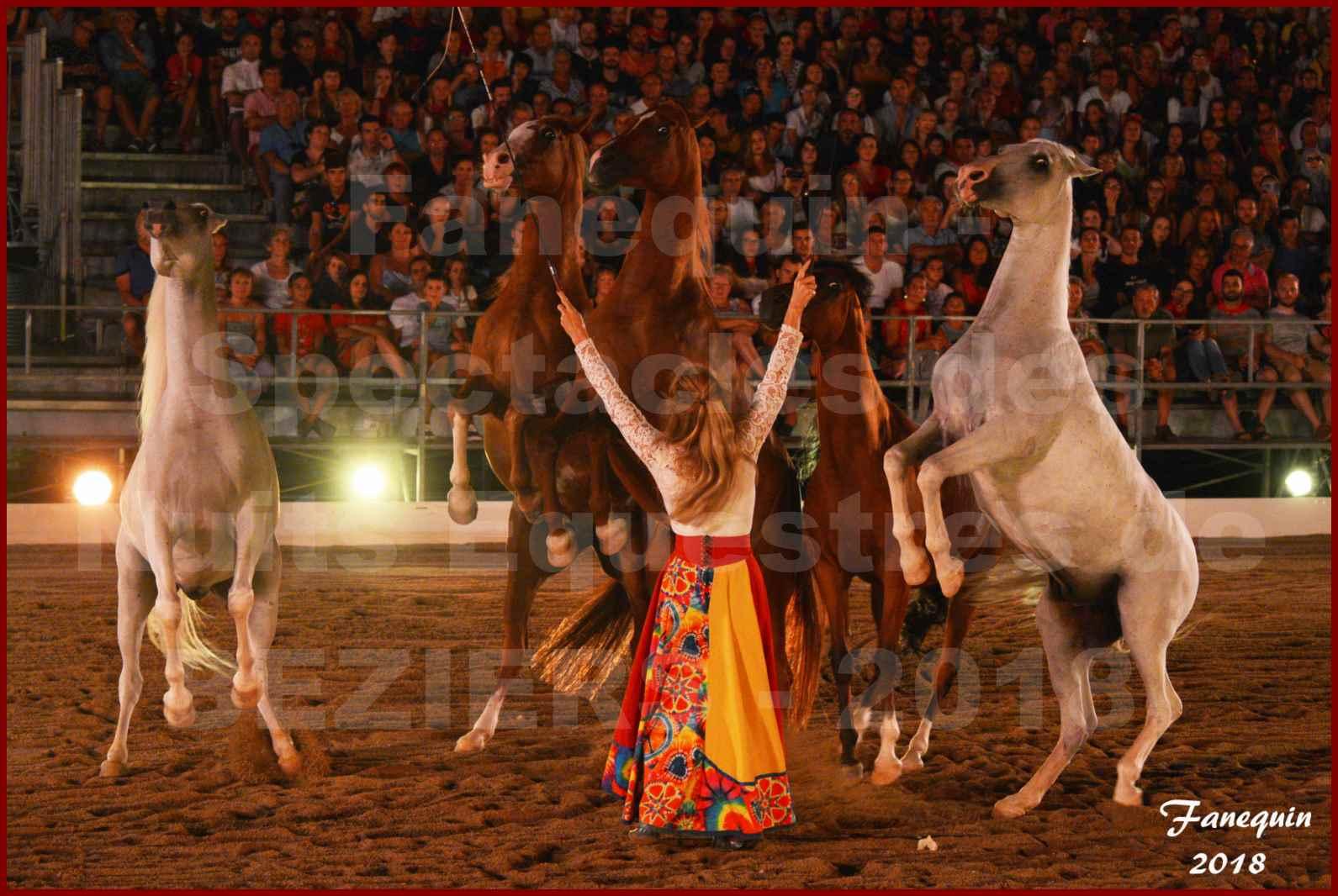 """Spectacles Équestres des """"Nuits Équestres""""  de la Féria de BÉZIERS 2018 - Sylvie WILLMS & ses chevaux en liberté - 04"""
