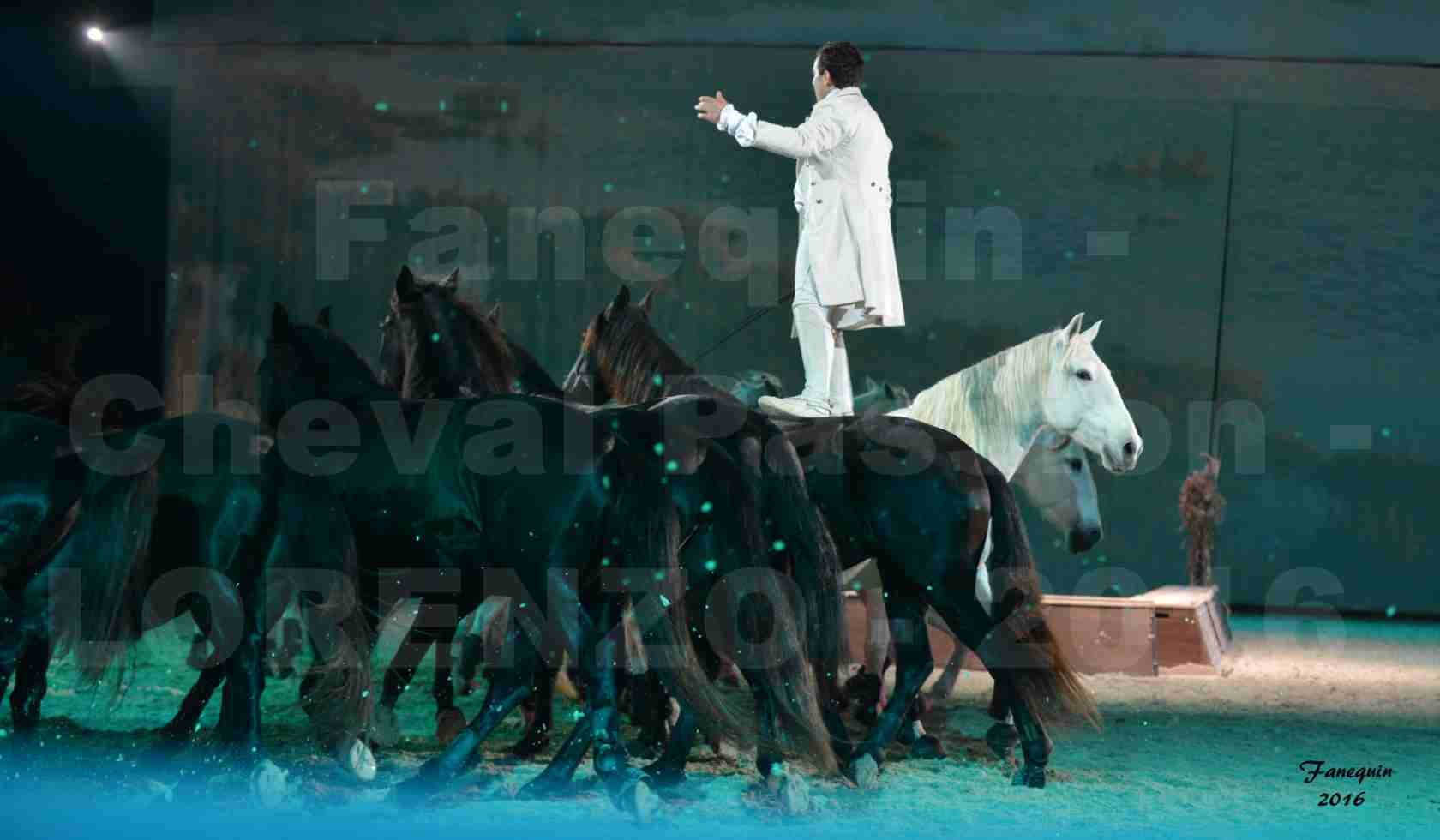 """Cheval Passion 2016 - Spectacle les Crinières d'OR - LORENZO """"Blanc"""" - représentation du 20 janvier 2016 - 29"""