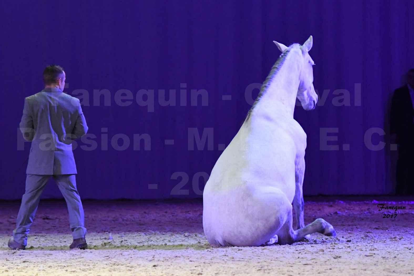 Cheval Passion 2017 - M. I. S. E. C. - Ludovic LONGO & 1 cheval en liberté - 16