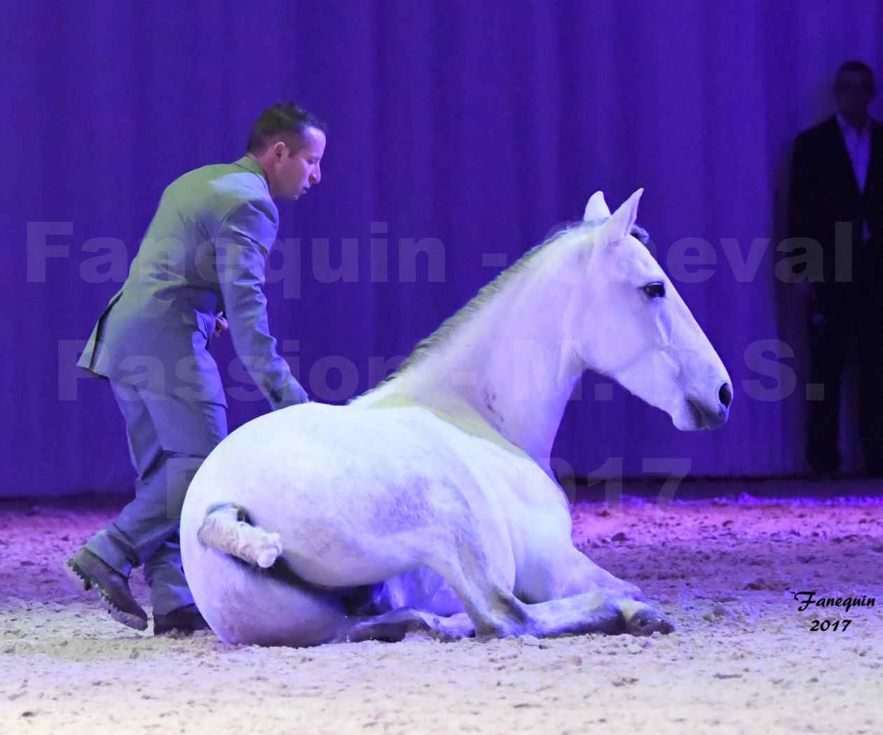 Cheval Passion 2017 - M. I. S. E. C. - Ludovic LONGO & 1 cheval en liberté - 17