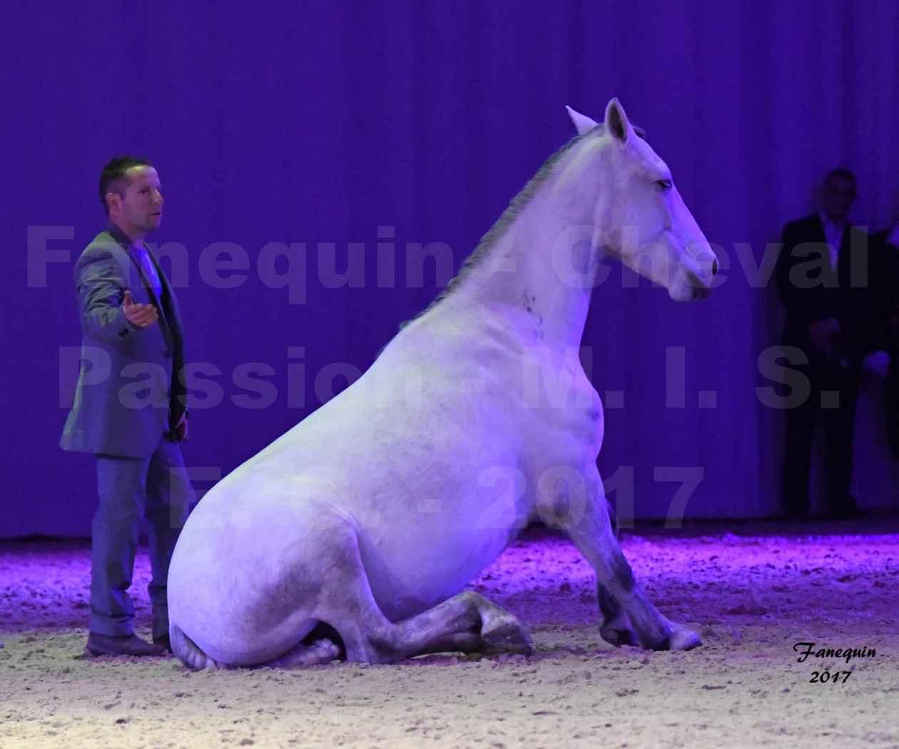 Cheval Passion 2017 - M. I. S. E. C. - Ludovic LONGO & 1 cheval en liberté - 20