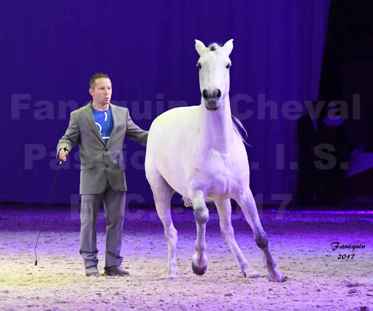 Cheval Passion 2017 - M. I. S. E. C. - Ludovic LONGO & 1 cheval en liberté - 07