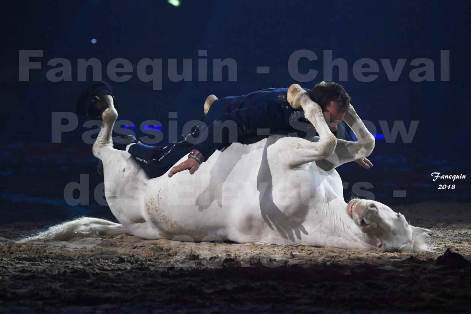Cheval Passion 2018 - Spectacle les Crinières d'OR - Le FACTEUR 3 - 09
