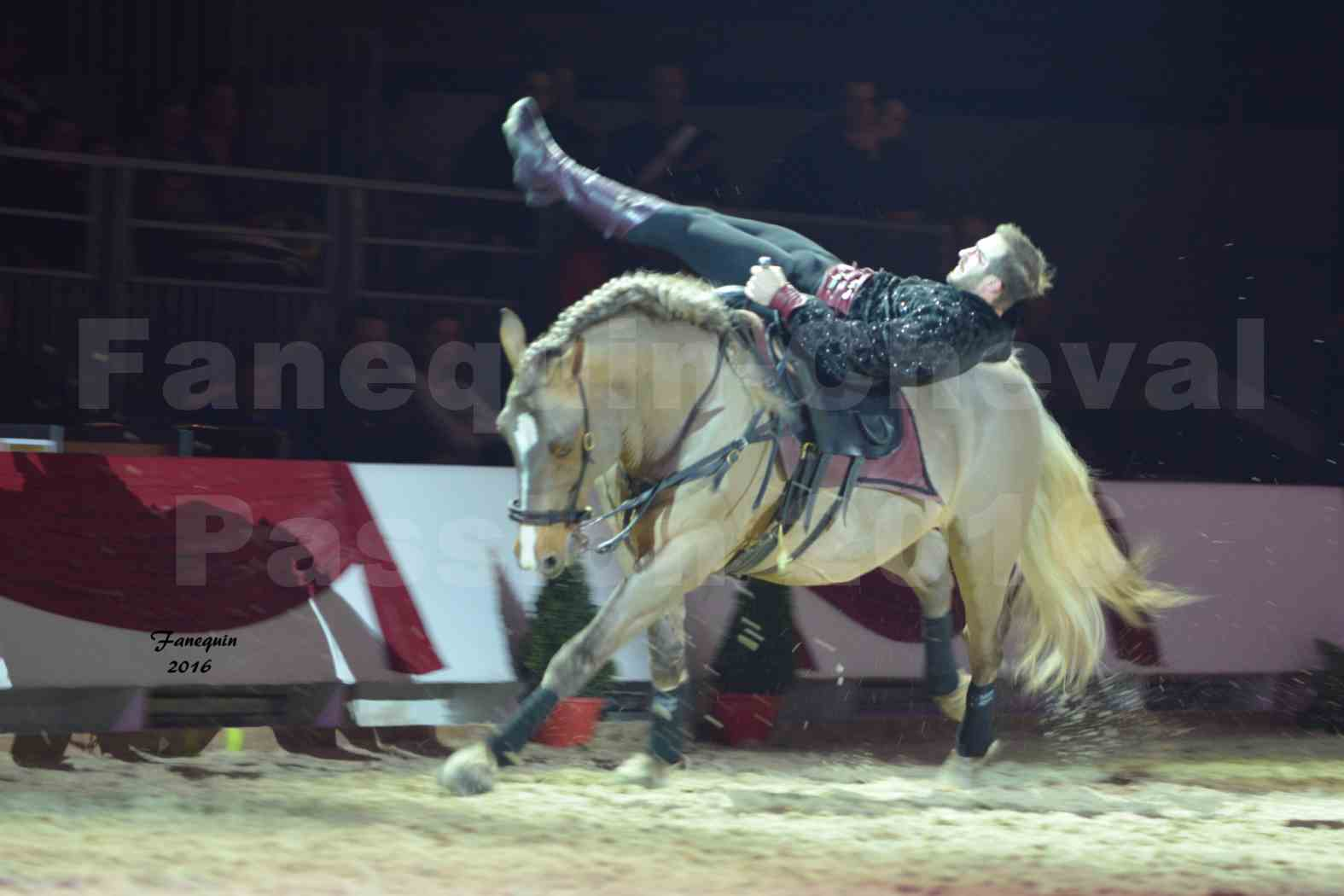 Cheval Passion 2016 - Spectacle les Crinières d'OR - Troupe JEHOL - 4