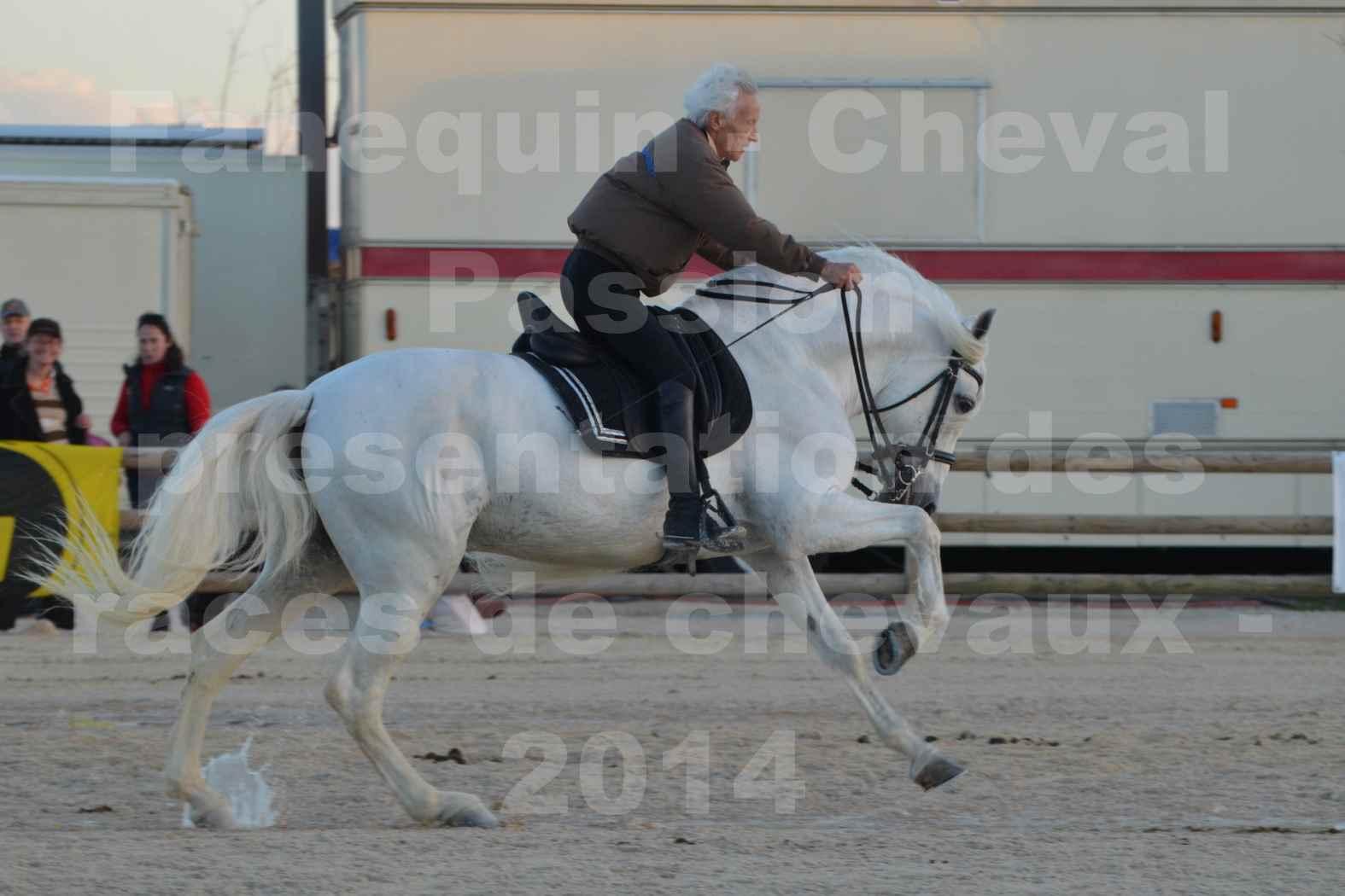 """Cheval Passion 2014 - Etalon """"GALAN""""  blanc écurie Alain LAUZIER - Notre Sélection - 27"""