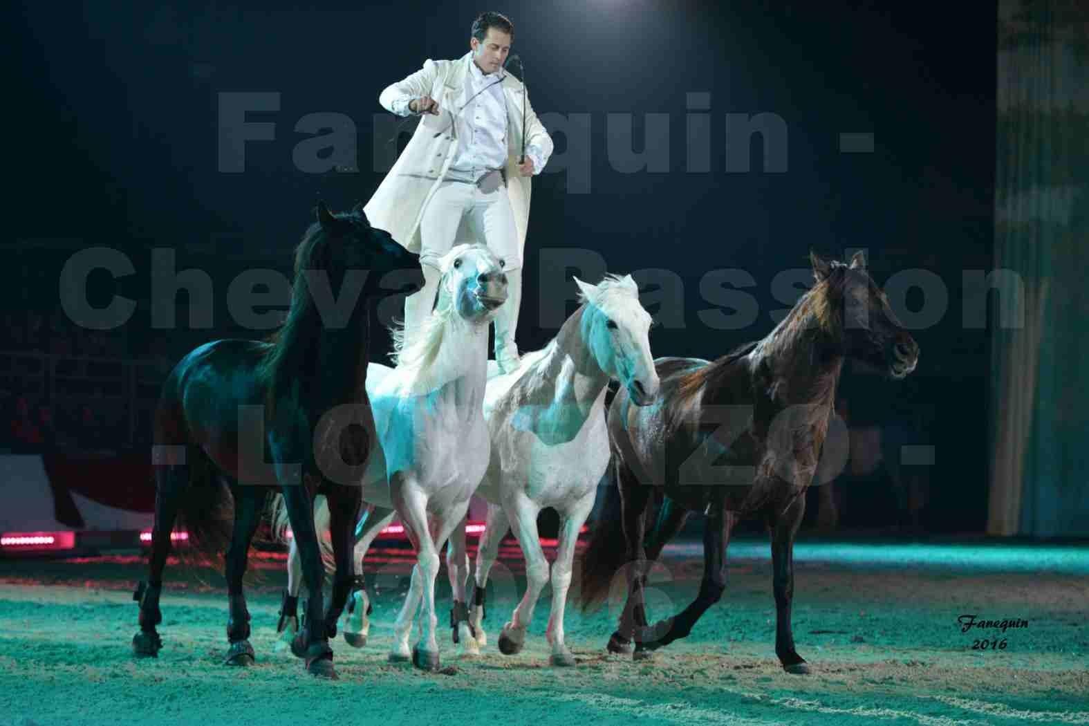 """Cheval Passion 2016 - Spectacle les Crinières d'OR - LORENZO """"Blanc"""" - représentation du 20 janvier 2016 - 13"""