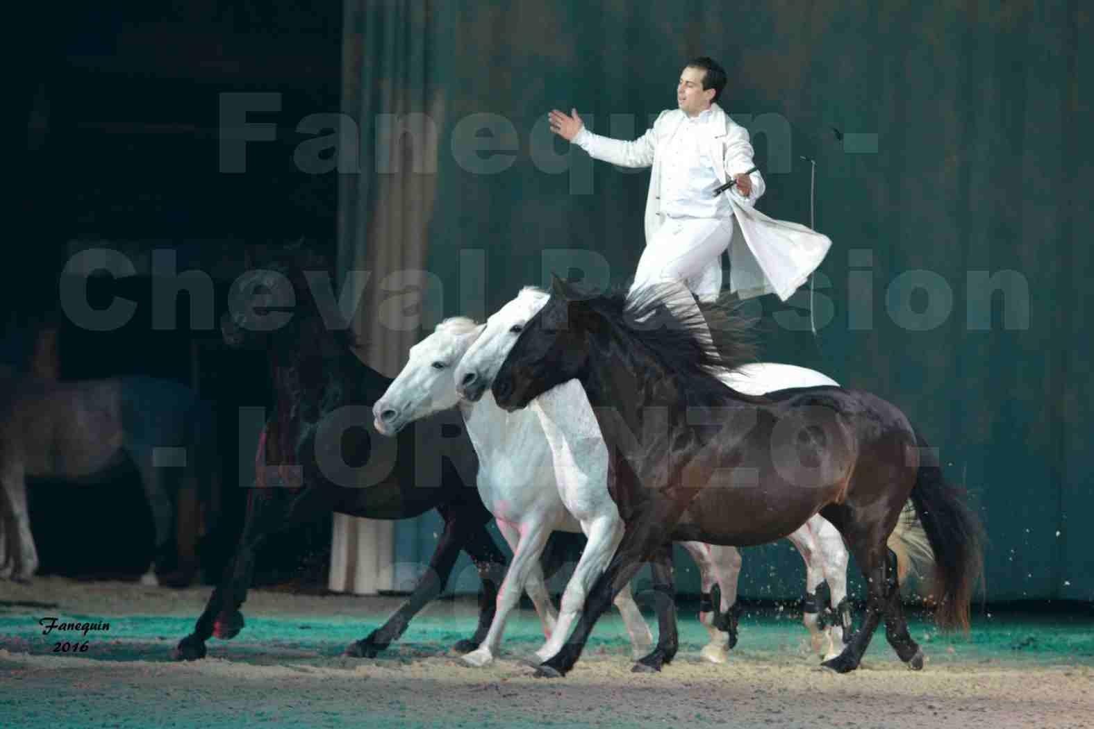 """Cheval Passion 2016 - Spectacle les Crinières d'OR - LORENZO """"Blanc"""" - représentation du 20 janvier 2016 - 14"""