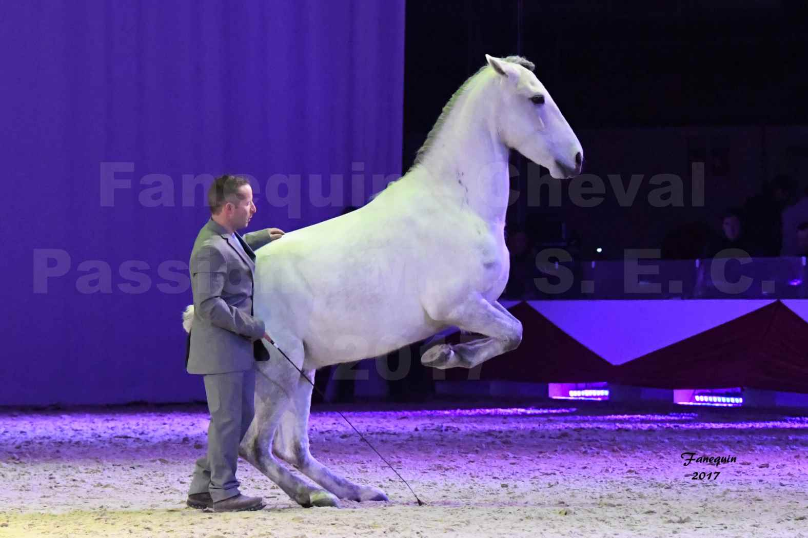 Cheval Passion 2017 - M. I. S. E. C. - Ludovic LONGO & 1 cheval en liberté - 12