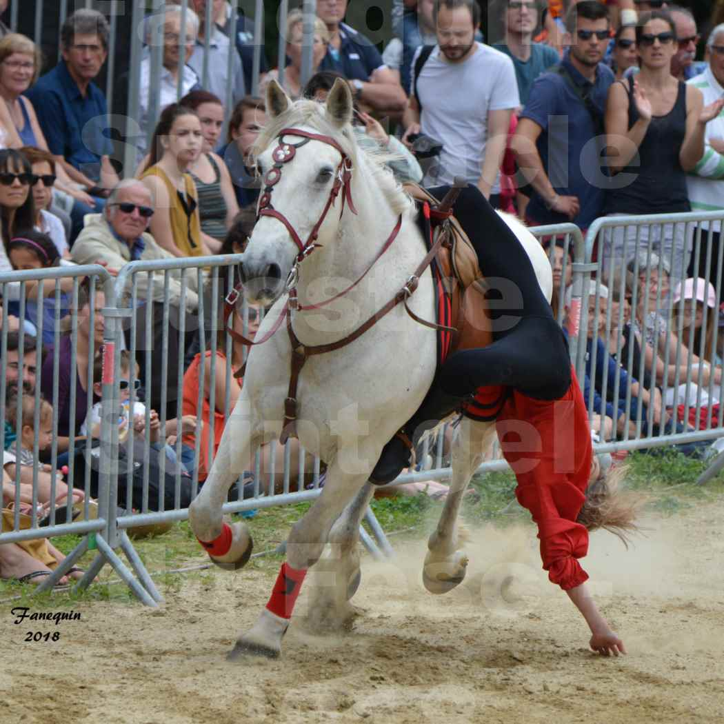 Spectacle Équestre le 3 juin 2018 à Saint Gély du Fesc - Voltige équestre - Troupe de Jean Antoine FIRMIN - 57