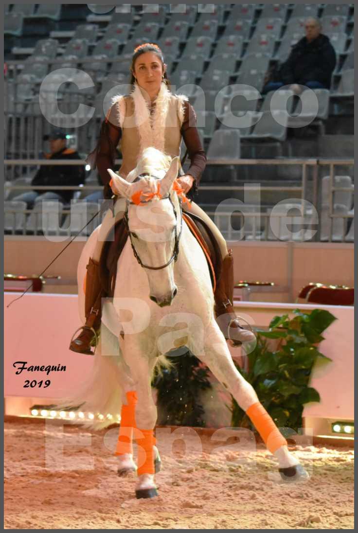 """Cheval Passion 2019 - Concours de Pas Espagnol - Étalon """"ZIDANE"""" - 06"""