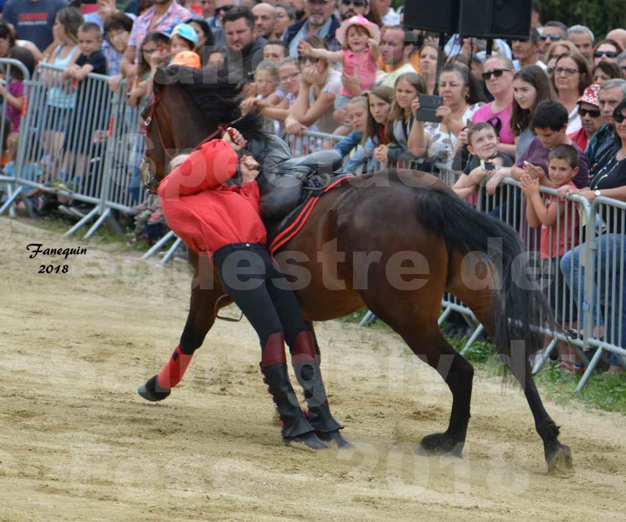 Spectacle Équestre le 3 juin 2018 à Saint Gély du Fesc - Voltige équestre - Troupe de Jean Antoine FIRMIN - 34