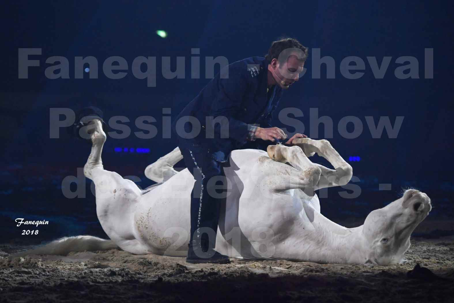 Cheval Passion 2018 - Spectacle les Crinières d'OR - Le FACTEUR 3 - 08