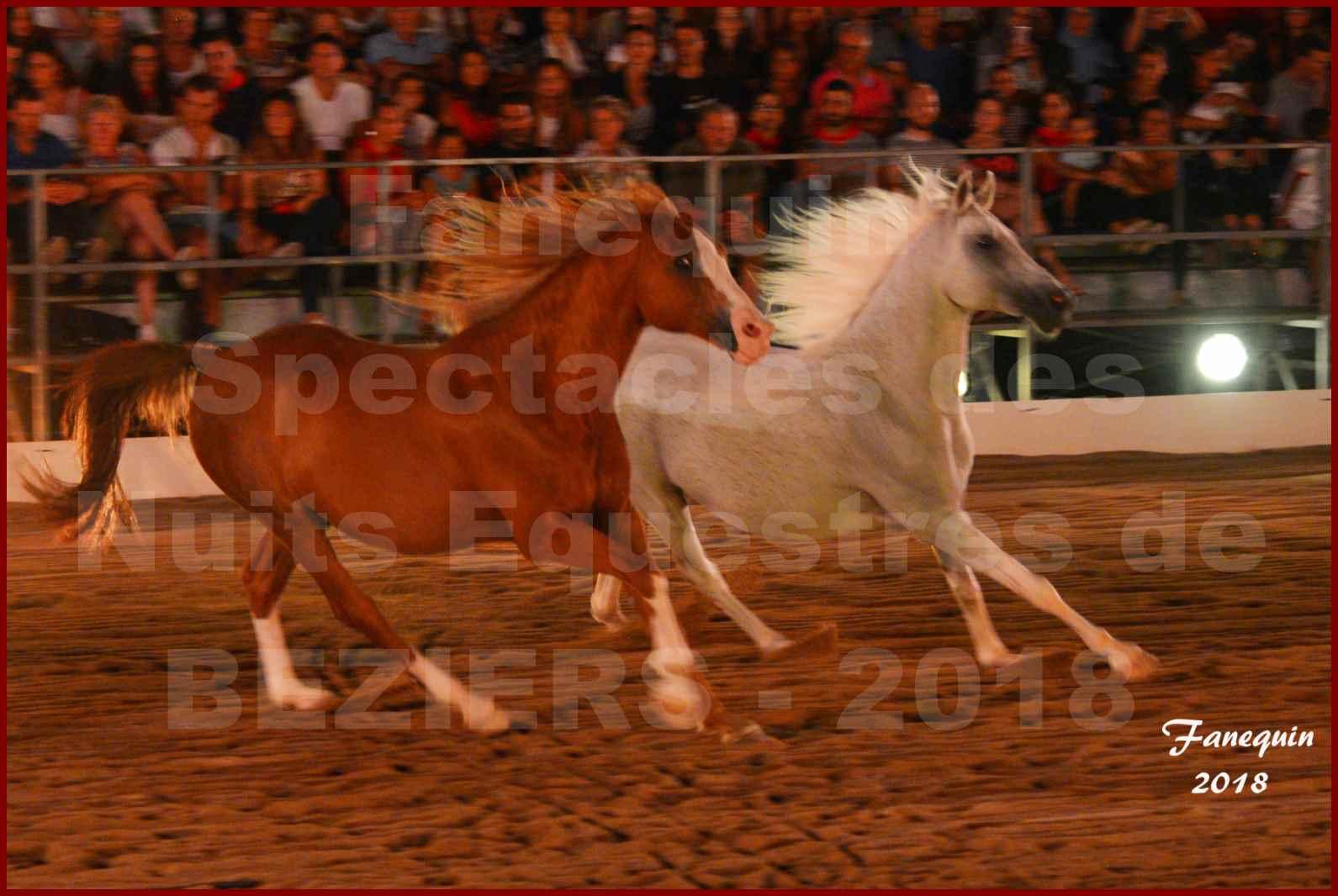 """Spectacles Équestres des """"Nuits Équestres""""  de la Féria de BÉZIERS 2018 - Sylvie WILLMS & ses chevaux en liberté - 03"""