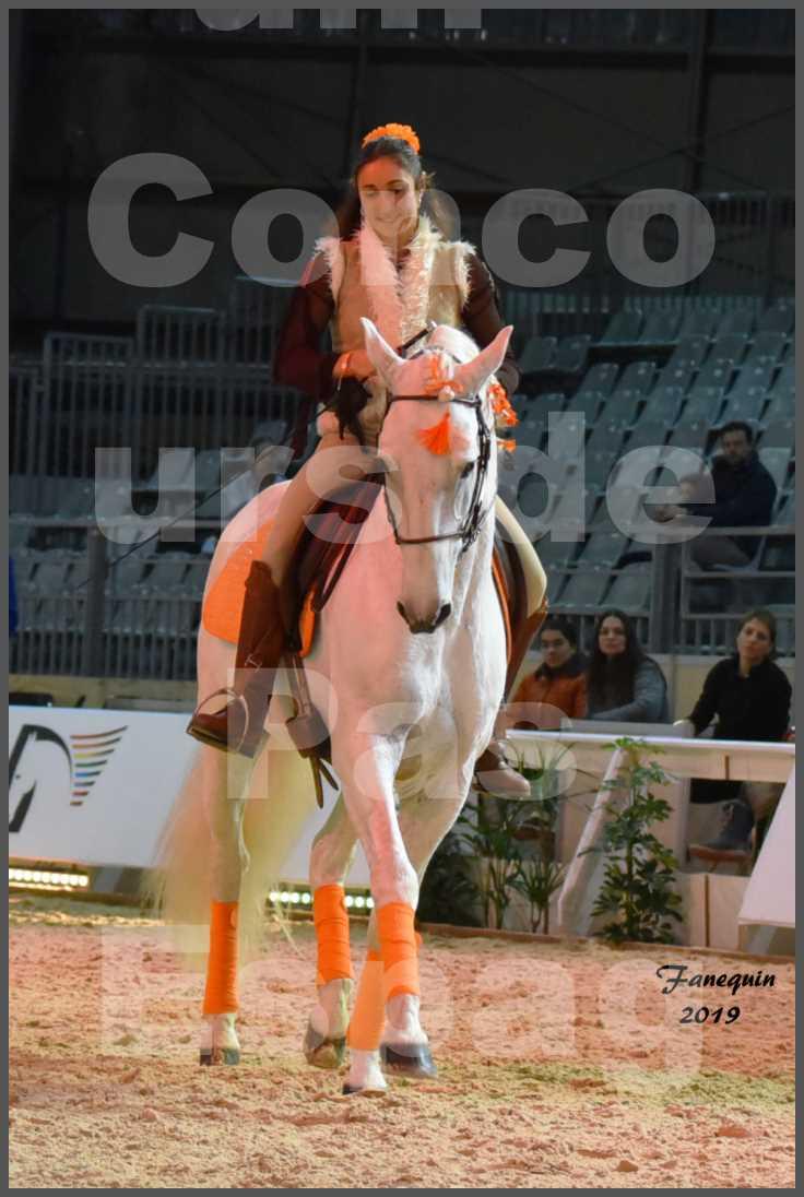 """Cheval Passion 2019 - Concours de Pas Espagnol - Étalon """"ZIDANE"""" - 21"""