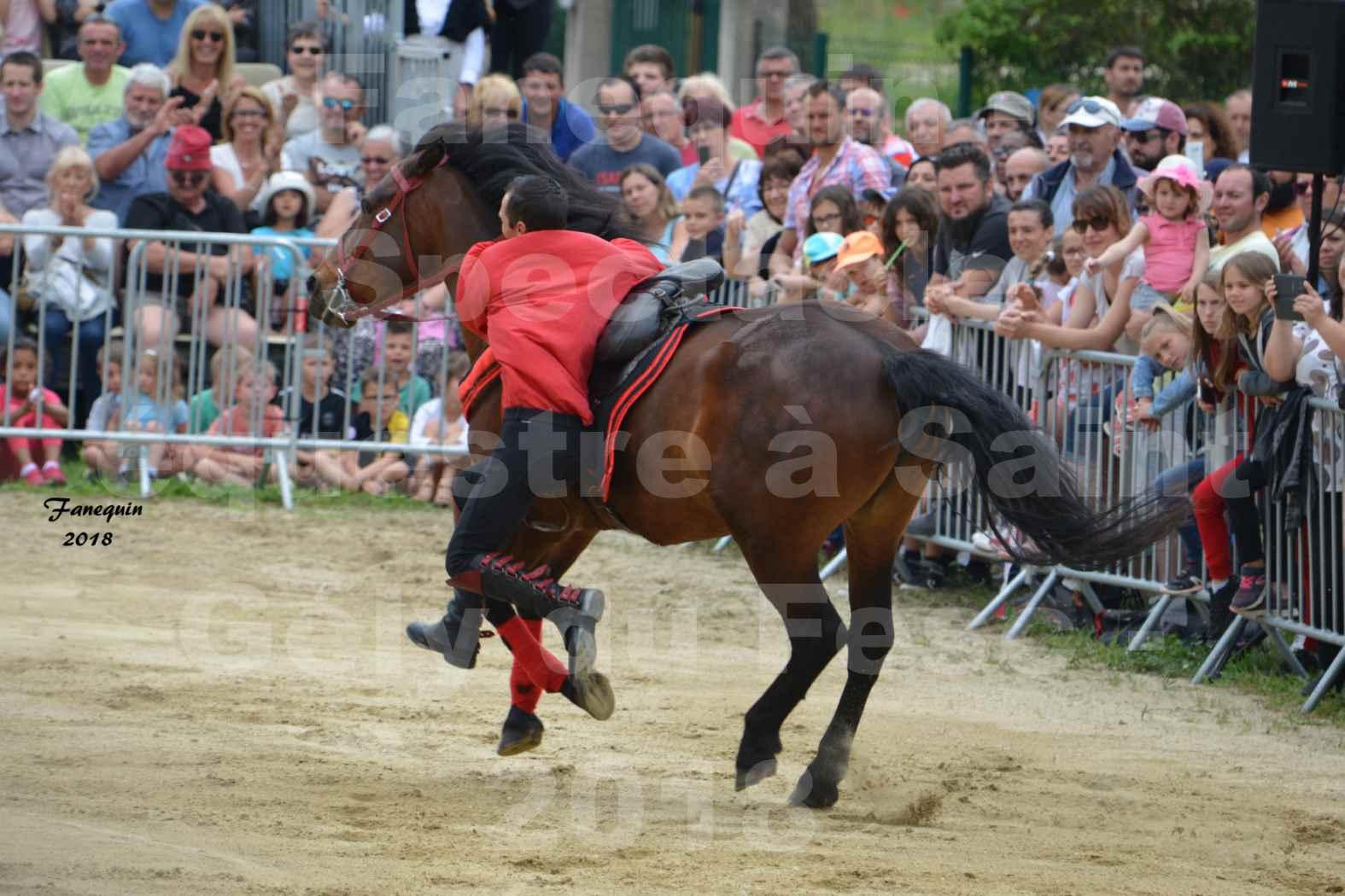 Spectacle Équestre le 3 juin 2018 à Saint Gély du Fesc - Voltige équestre - Troupe de Jean Antoine FIRMIN - 53