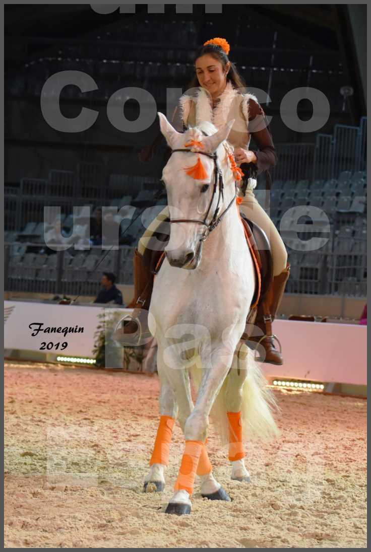 """Cheval Passion 2019 - Concours de Pas Espagnol - Étalon """"ZIDANE"""" - 28"""
