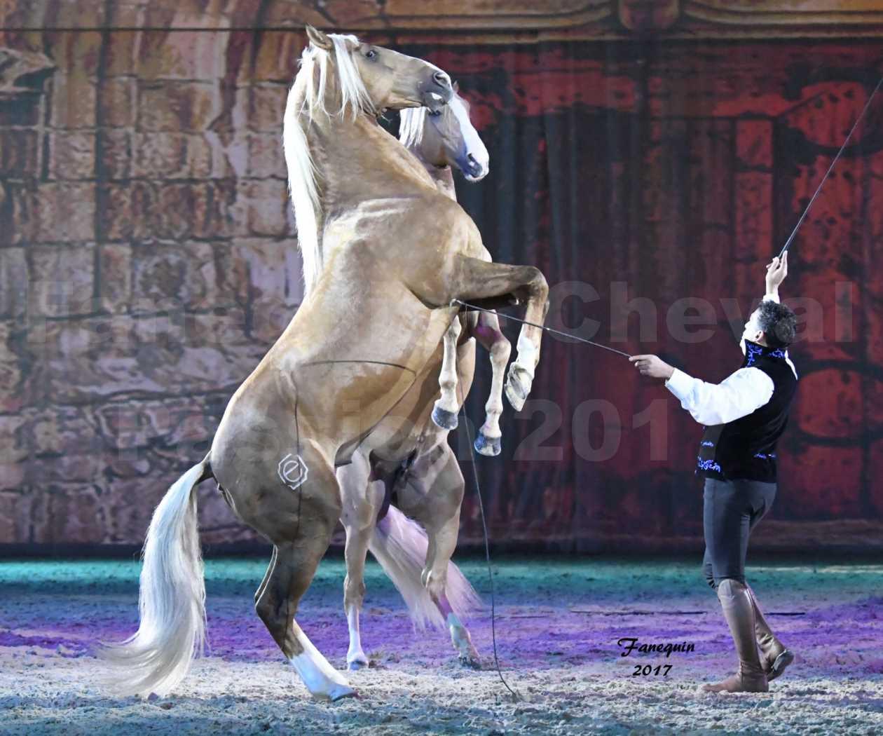 Cheval Passion 2017 - gala des Crinières d'OR - GARI ZOHER - 02