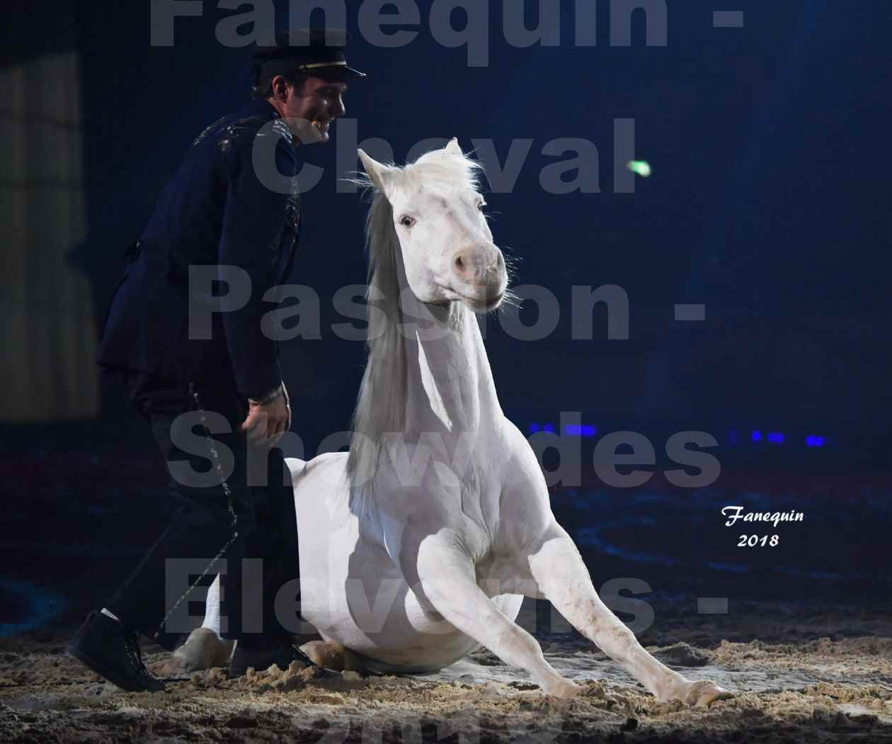 Cheval Passion 2018 - Spectacle les Crinières d'OR - Le FACTEUR 3 - 11