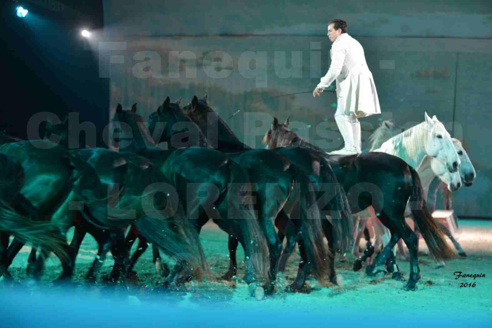 """Cheval Passion 2016 - Spectacle les Crinières d'OR - LORENZO """"Blanc"""" - représentation du 20 janvier 2016 - 25"""