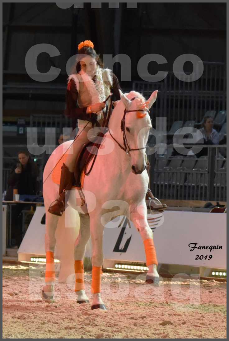 """Cheval Passion 2019 - Concours de Pas Espagnol - Étalon """"ZIDANE"""" - 16"""