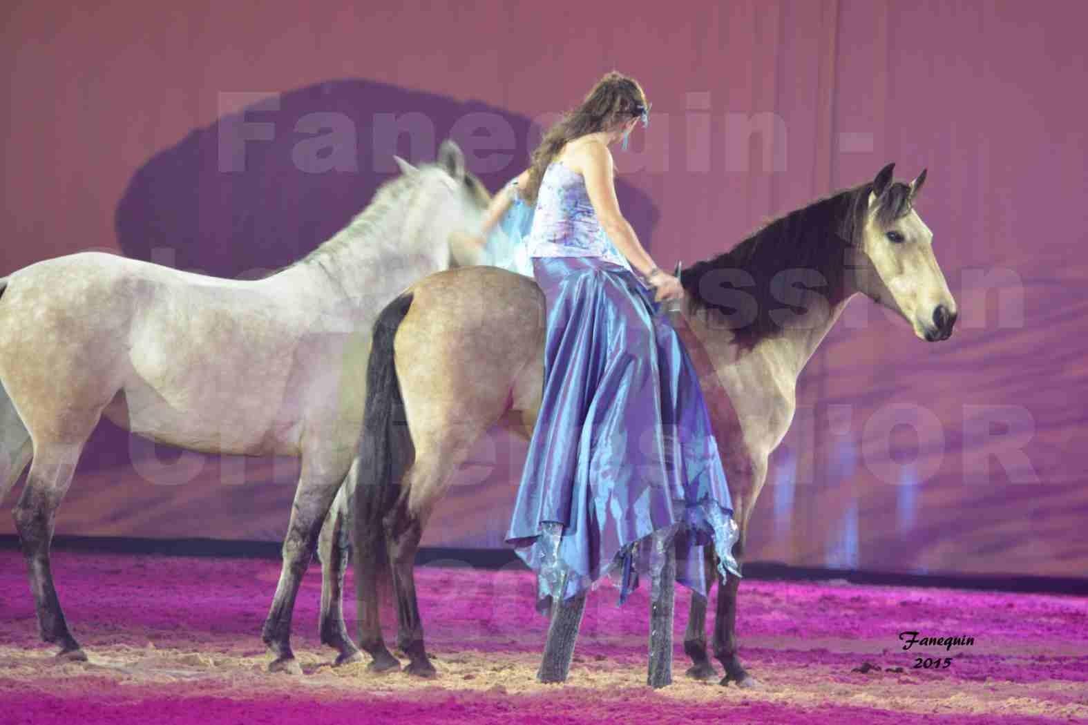 Cheval Passion 2015 - Spectacle des Crinières d'OR - Lucie VAUTHIER & 2 chevaux en liberté - 12