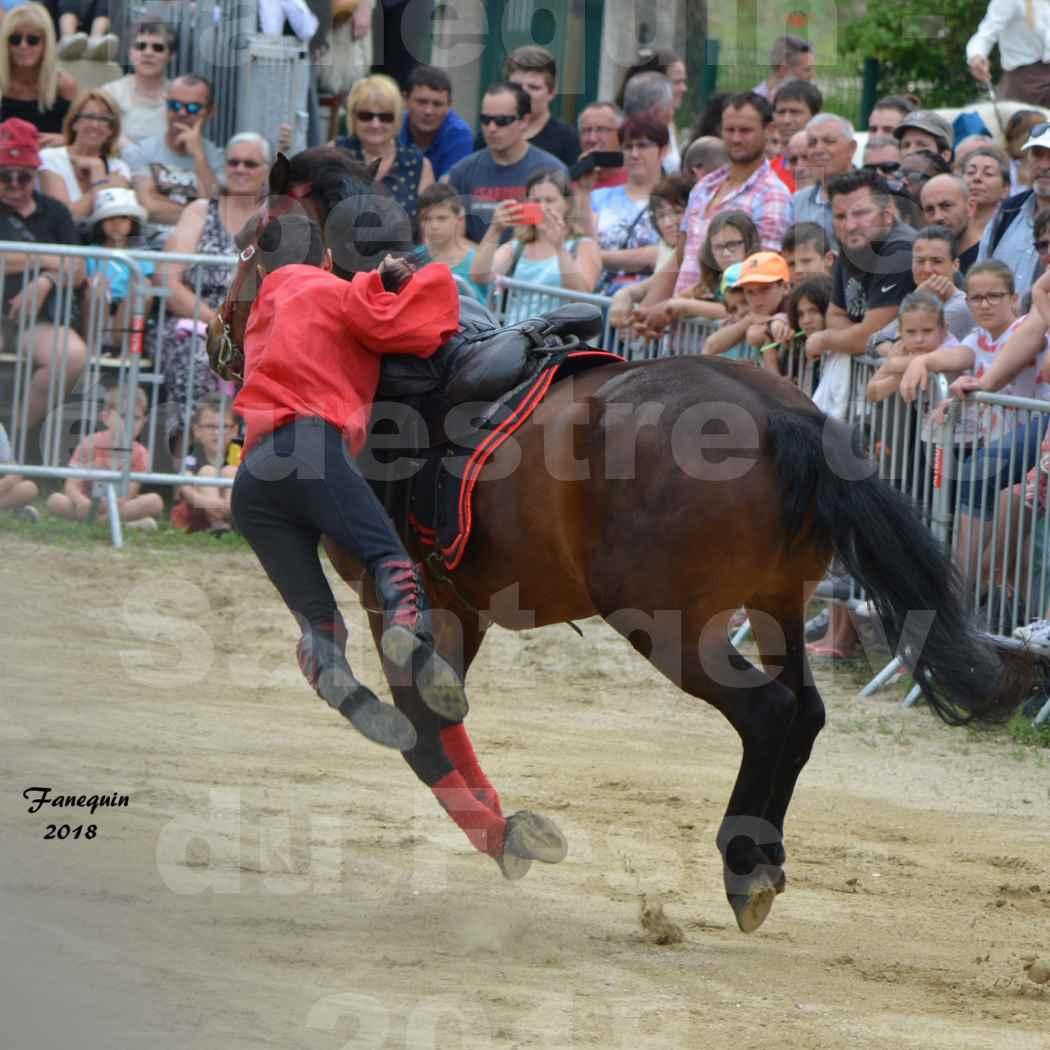Spectacle Équestre le 3 juin 2018 à Saint Gély du Fesc - Voltige équestre - Troupe de Jean Antoine FIRMIN - 04
