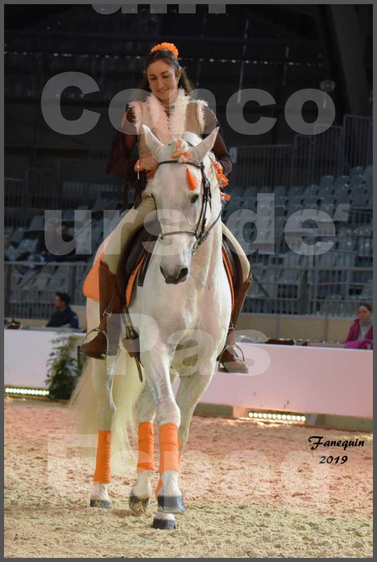 """Cheval Passion 2019 - Concours de Pas Espagnol - Étalon """"ZIDANE"""" - 27"""