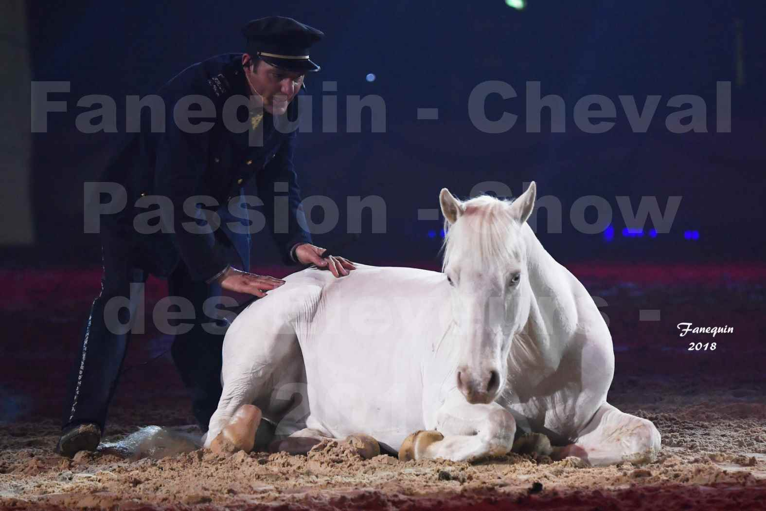 Cheval Passion 2018 - Spectacle les Crinières d'OR - Le FACTEUR 3 - 06