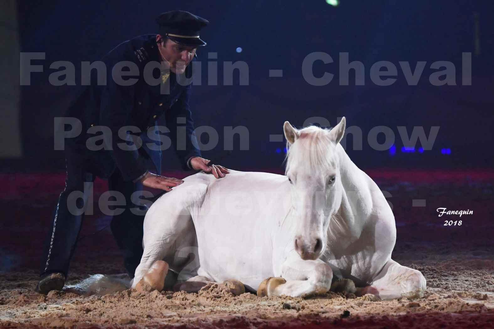 Cheval Passion 2018 - Spectacle les Crinières d'OR - Le FACTEUR 3 - 06