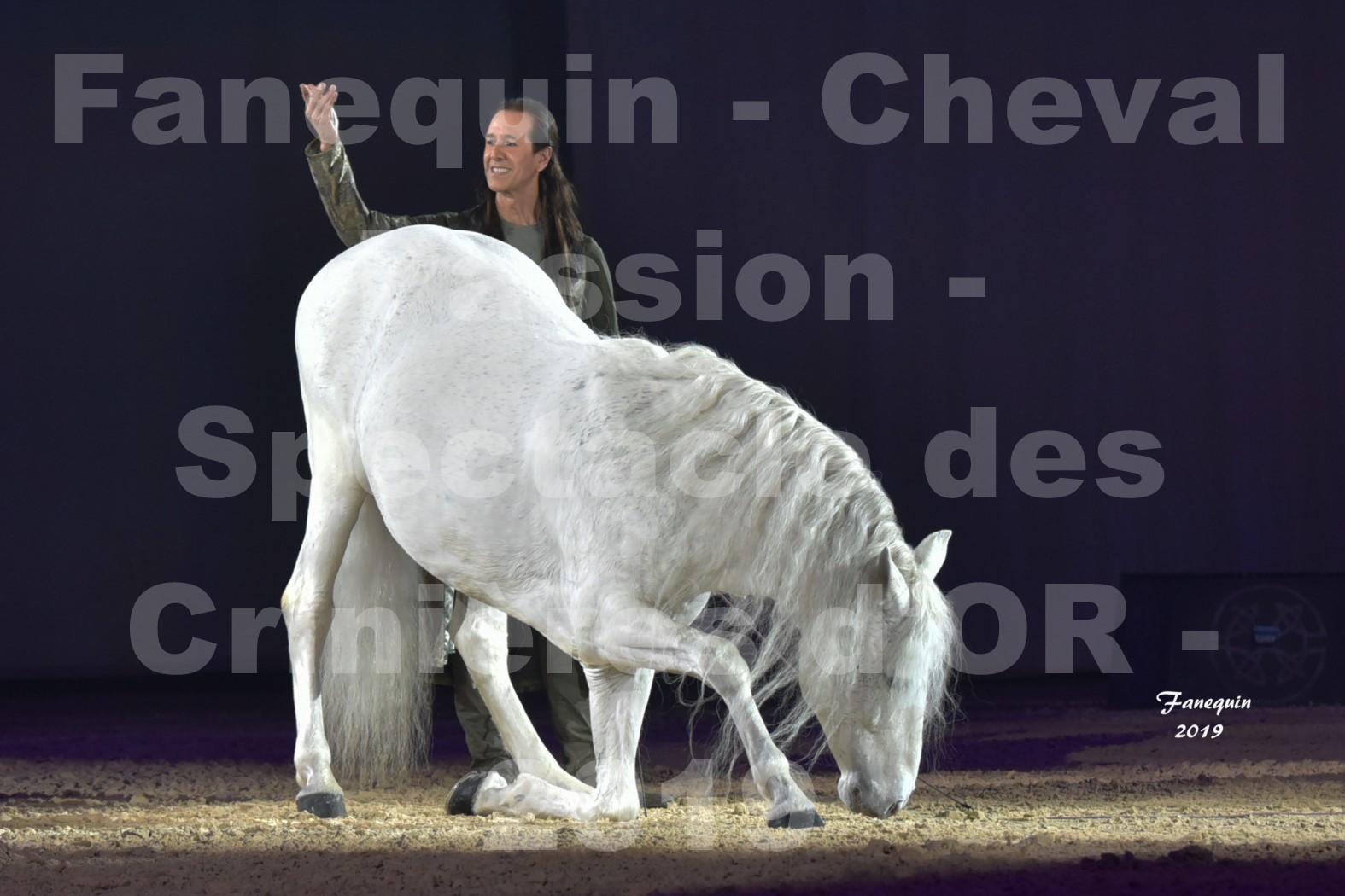 Cheval Passion 2019 - Spectacle des CRINIÈRES d'OR - Frédéric PIGNON & Cheval Gris en liberté - 36
