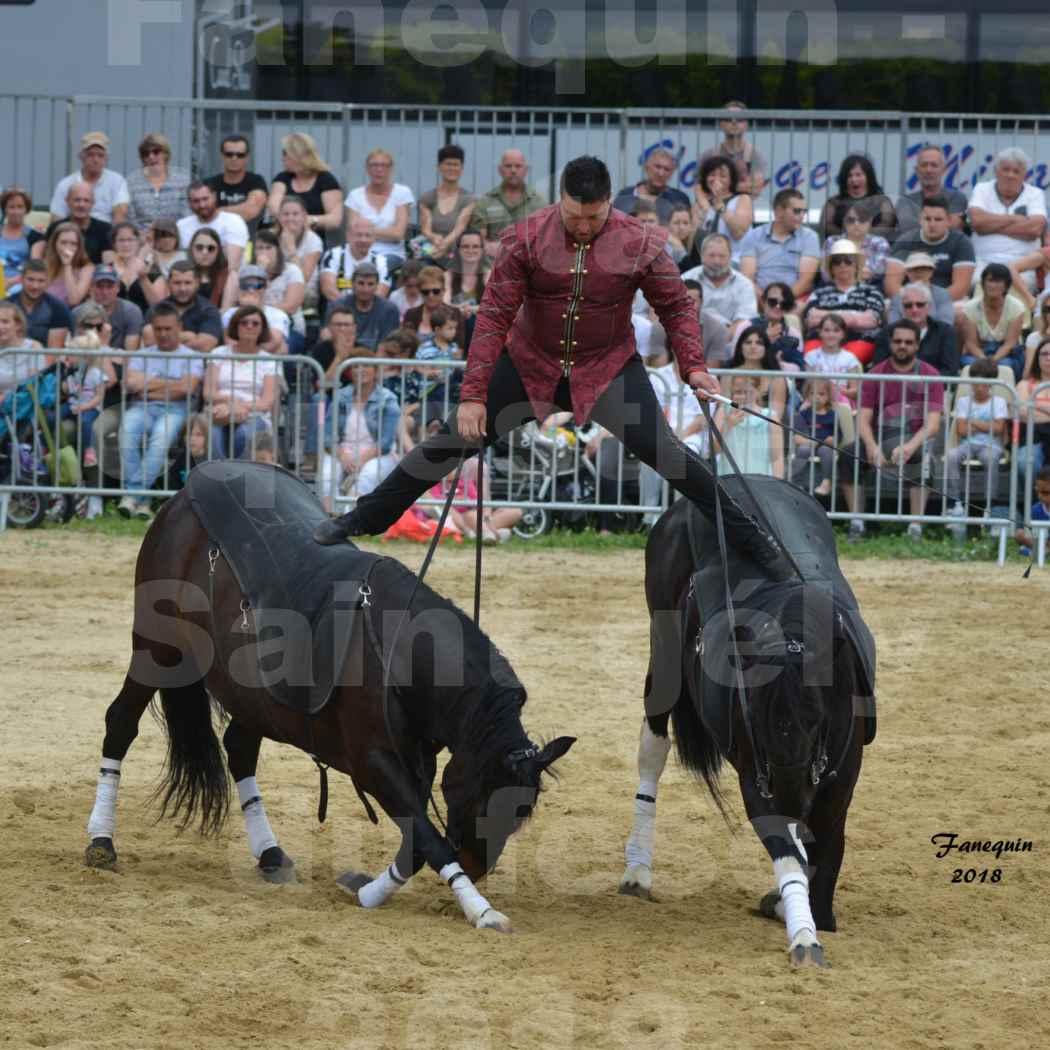 Spectacle Équestre le 3 juin 2018 à Saint Gély du Fesc - Poste Hongroise de 2 à 6 chevaux - Benoît SOUMILLE - 02