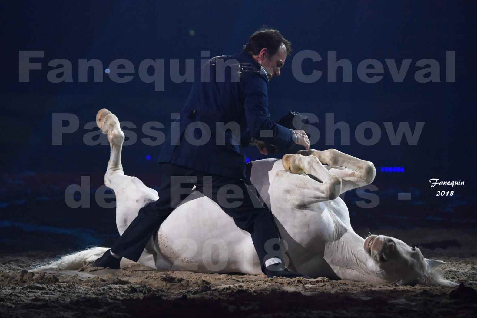 Cheval Passion 2018 - Spectacle les Crinières d'OR - Le FACTEUR 3 - 12