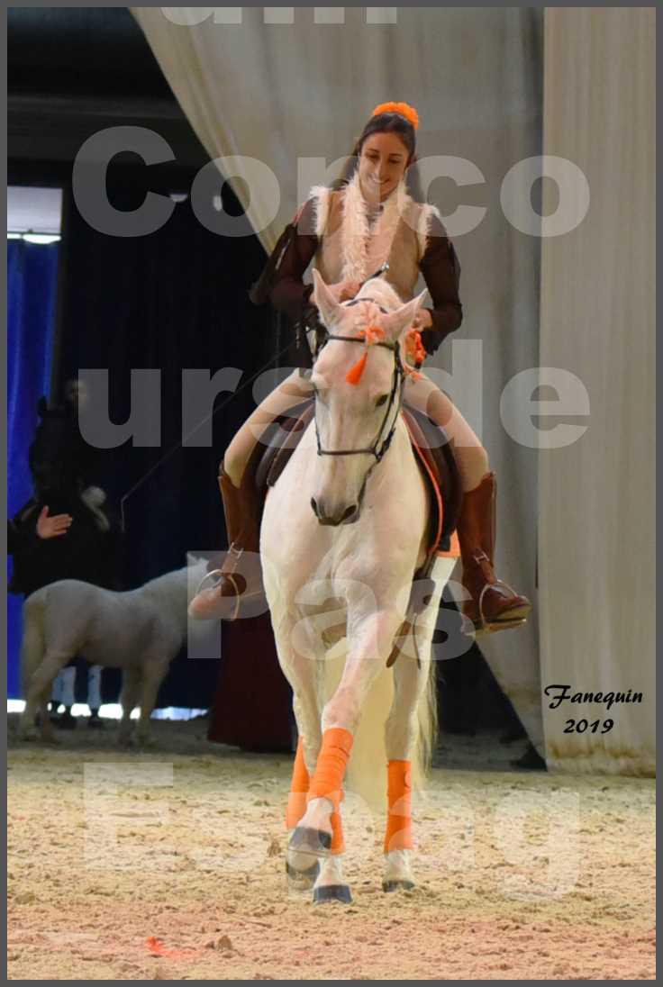 """Cheval Passion 2019 - Concours de Pas Espagnol - Étalon """"ZIDANE"""" - 55"""