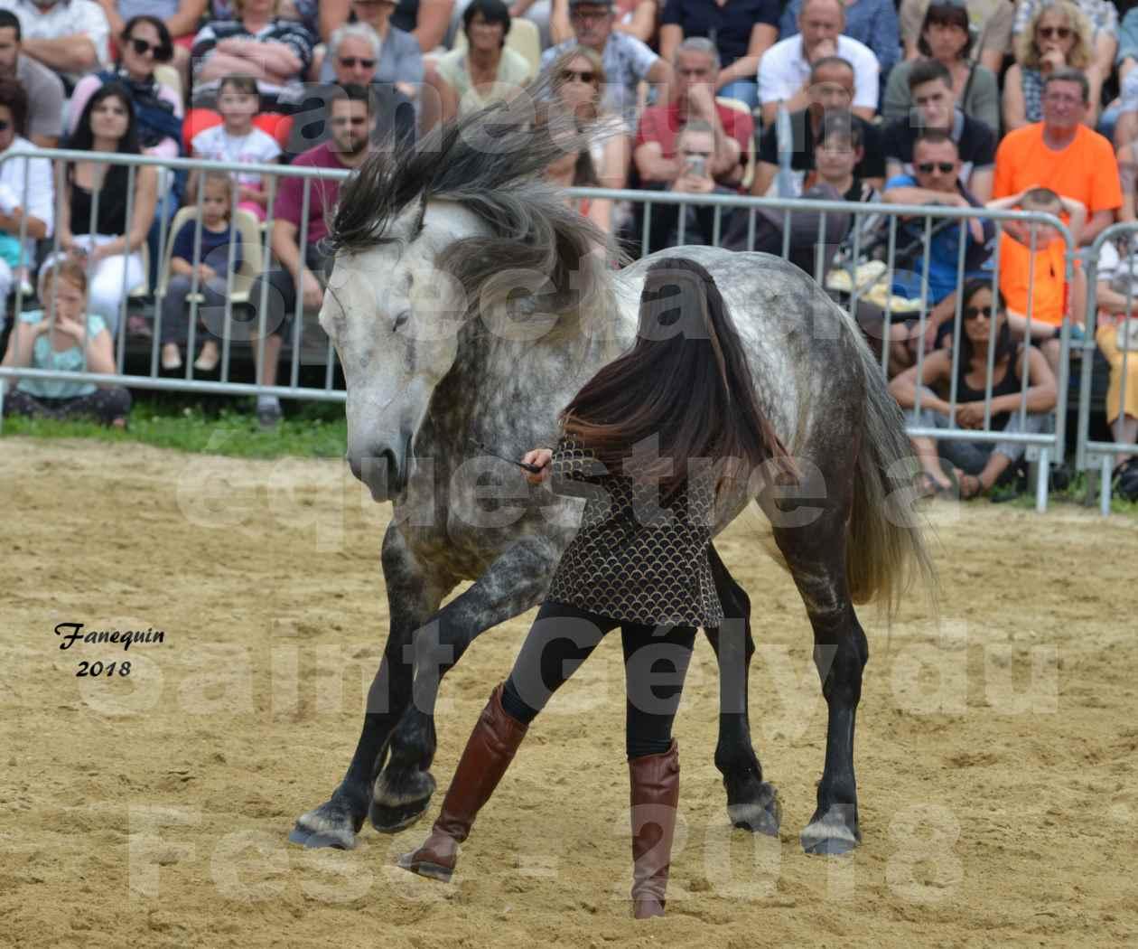 Spectacle Équestre le 3 juin 2018 à Saint Gély du Fesc - 5 chevaux en liberté - Anne Gaëlle BERTHO - 01