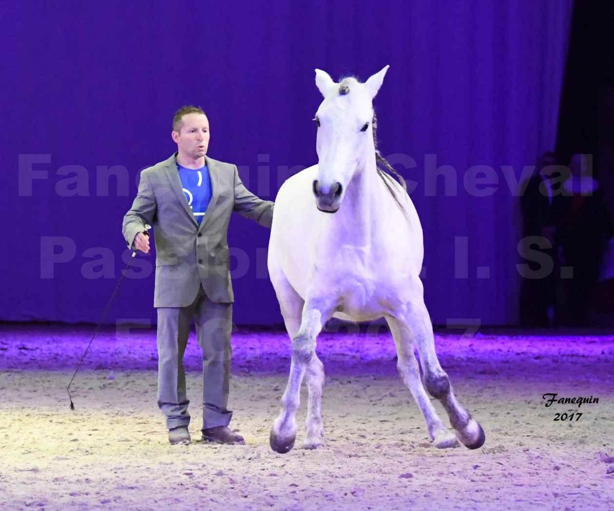 Cheval Passion 2017 - M. I. S. E. C. - Ludovic LONGO & 1 cheval en liberté - 05
