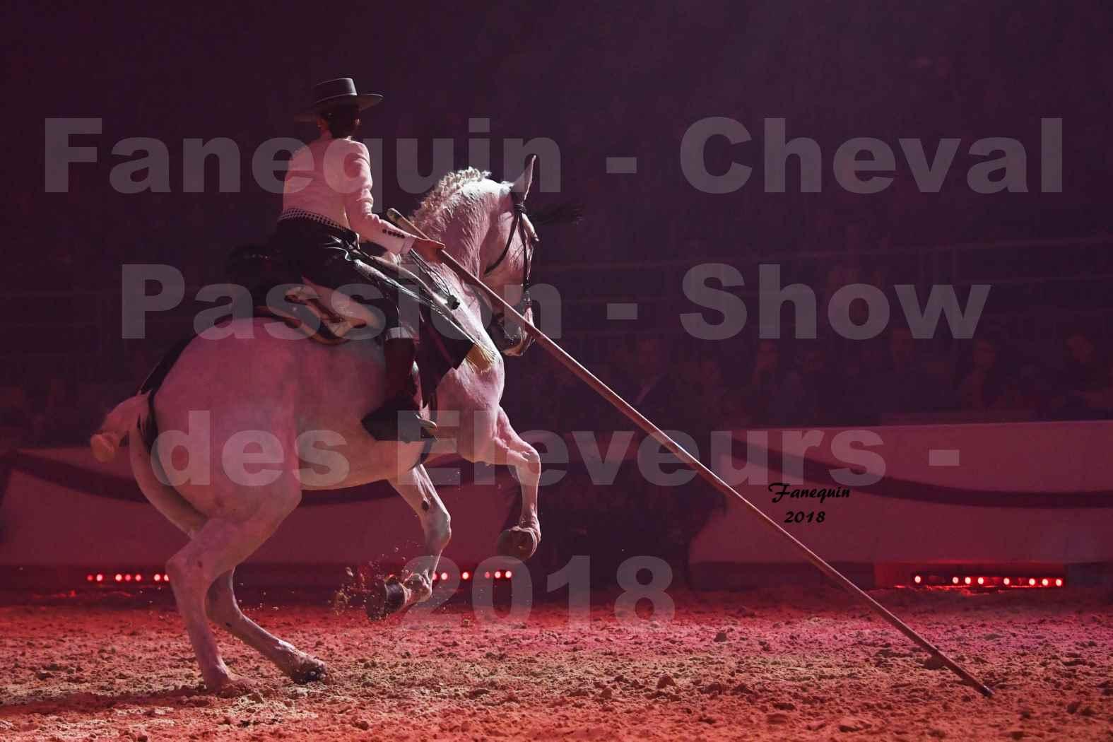 Cheval Passion 2018 - Spectacle Les Crinières d'OR 2018 - Doma Vaquera féminin - 19