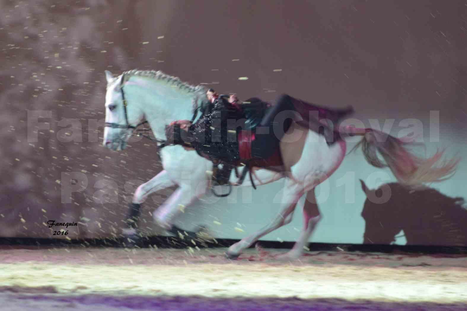 Cheval Passion 2016 - Spectacle les Crinières d'OR - Troupe JEHOL - 6