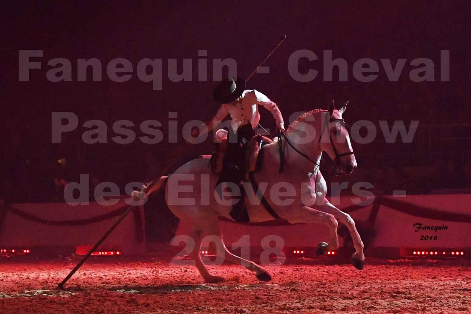 Cheval Passion 2018 - Spectacle Les Crinières d'OR 2018 - Doma Vaquera féminin - 14