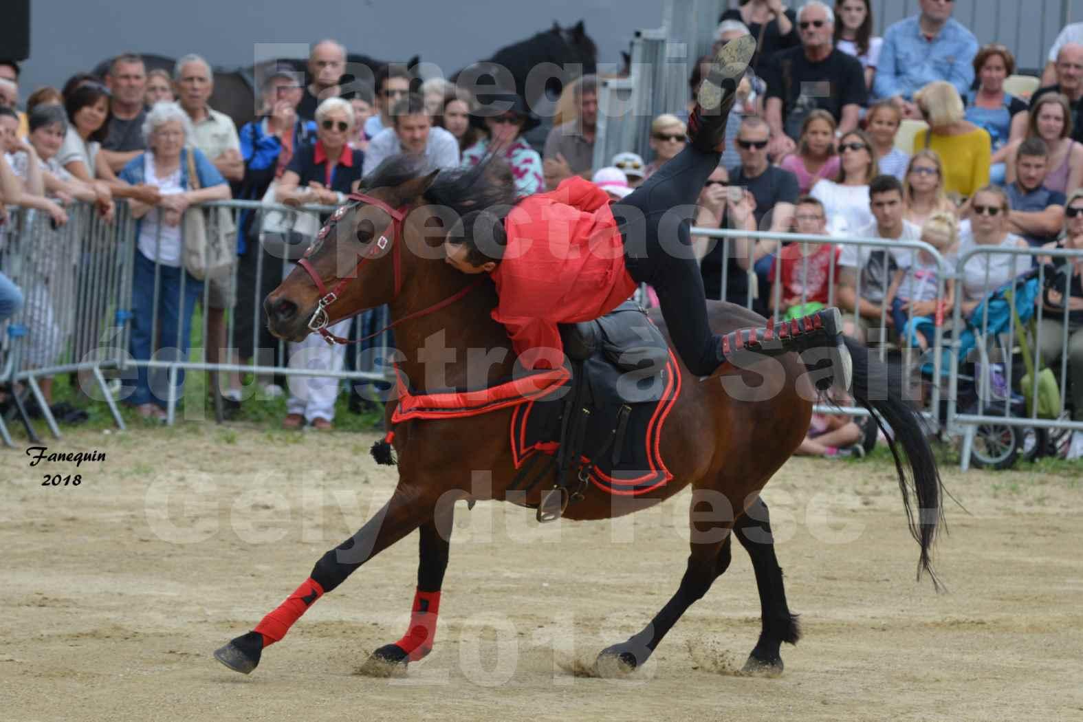 Spectacle Équestre le 3 juin 2018 à Saint Gély du Fesc - Voltige équestre - Troupe de Jean Antoine FIRMIN - 05