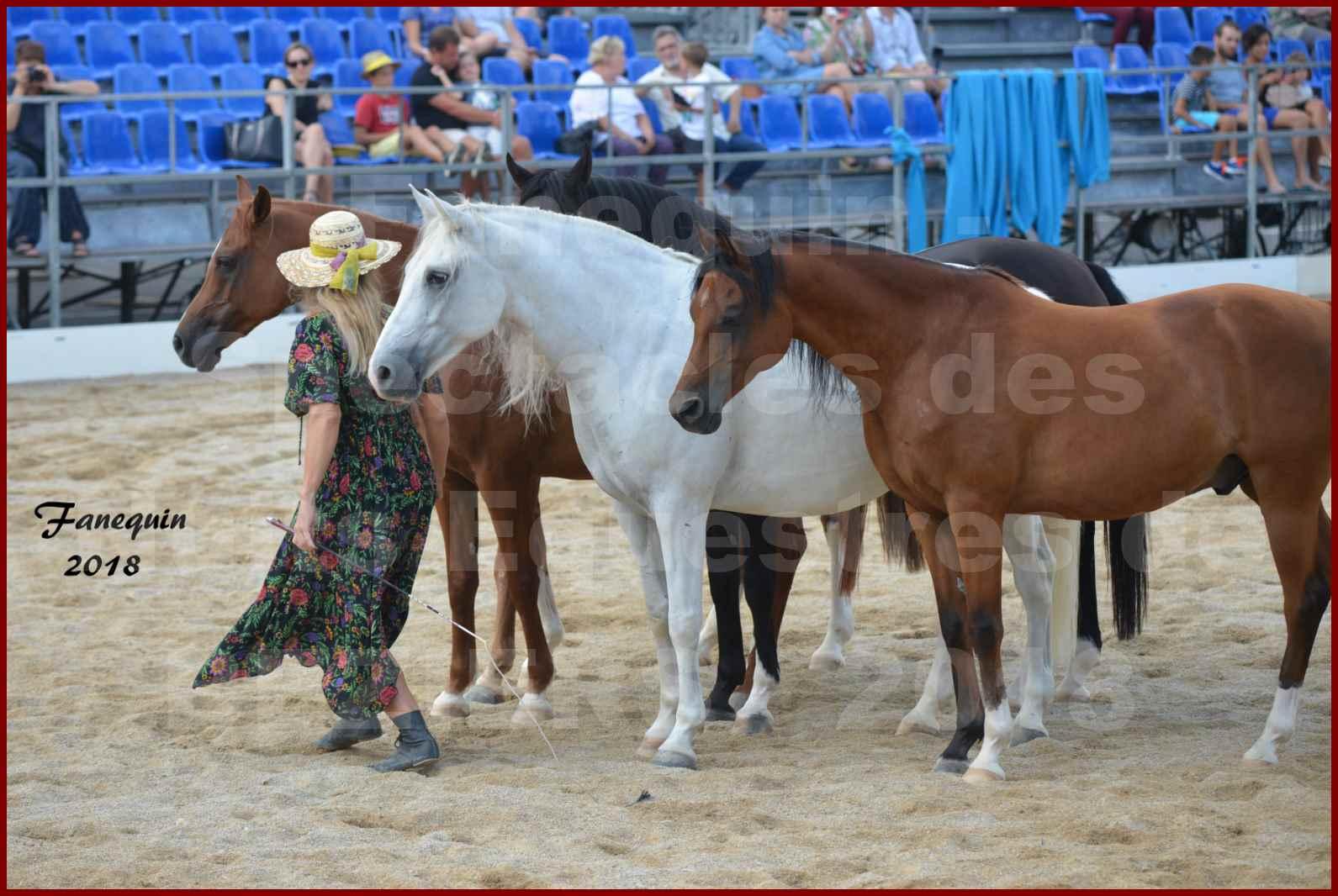 """""""Nuits Équestres""""  de la Féria de BÉZIERS 2018 - Spectacle en journée - Sylvie WILLMS & ses chevaux en liberté - 05"""