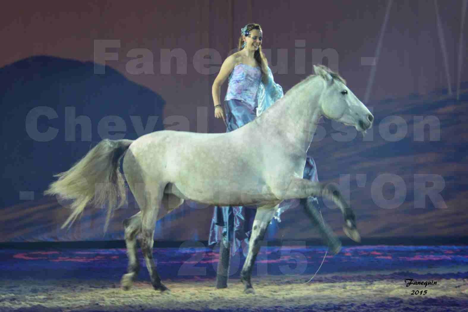 Cheval Passion 2015 - Spectacle des Crinières d'OR - Lucie VAUTHIER & 2 chevaux en liberté - 08