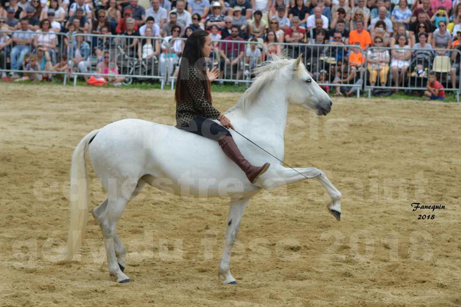 Spectacle Équestre le 3 juin 2018 à Saint Gély du Fesc - 5 chevaux en liberté - Anne Gaëlle BERTHO - 03
