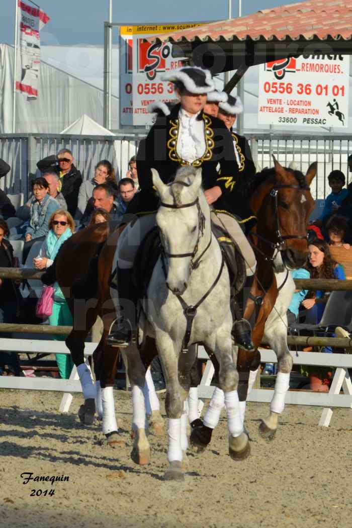 """Carrousel de cavalières Equitation de travail lors du salon """"Equitaine"""" à Bordeaux en 2014 - 20"""